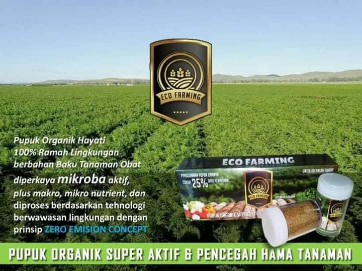 Sedia Pupuk Organik Terbaik Eco Farming Untuk Petani
