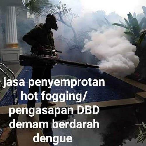 Jasa Pembasmian Hama Jakarta Barat Terbaik Terpercaya